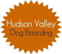 Hudson Valley Dog Boarding; Hudson Valley, Kingston, Rosendale, Stoneridge & New York